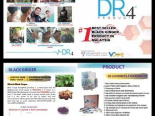 DR4 Food Supplement