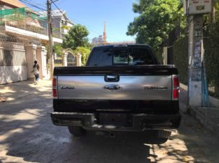 Sell Ford F-150 Platinum 09