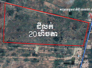 Land for sell at Battambang