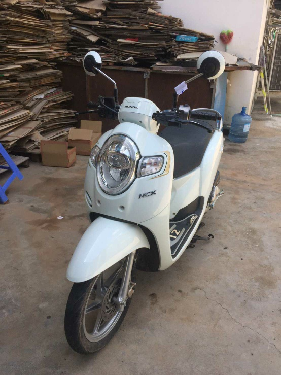 scoopy 2019