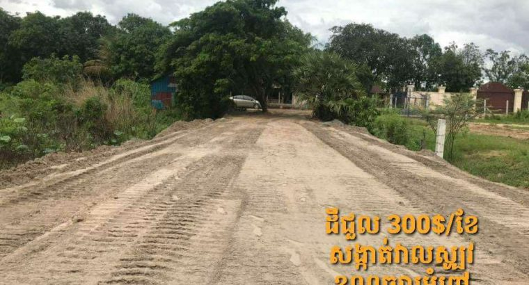 land for lease 300$/500sqm