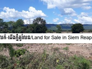 Land for sale in Siem Reap Province