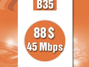 FTTH Business 45mbps/88$
