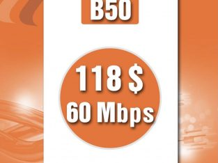 FTTH business 60mbps/118