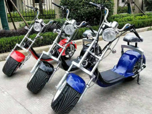 3000 Watts Harley Citycoco Electric scooter